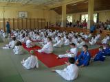 2015. június 6. - VIII. Harsányi Judo Gála