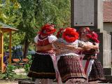 2011.08. 27. - Bükkaljai Szüreti Napok rendezvény sorozat, Harsányi rendezvénye